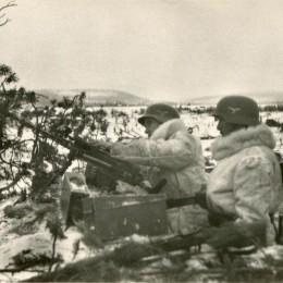 2-я дивизия люфтваффе